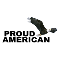 "12"" x 5"" Proud American with Eagle Decal"